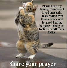 quotes cat please keep my family,