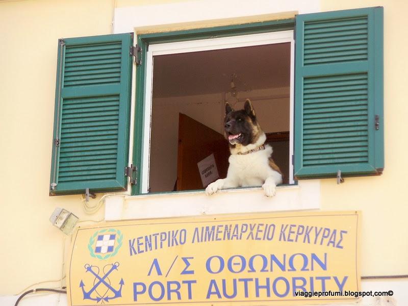 Othoni, isole Diapontie: capitaneria di porto