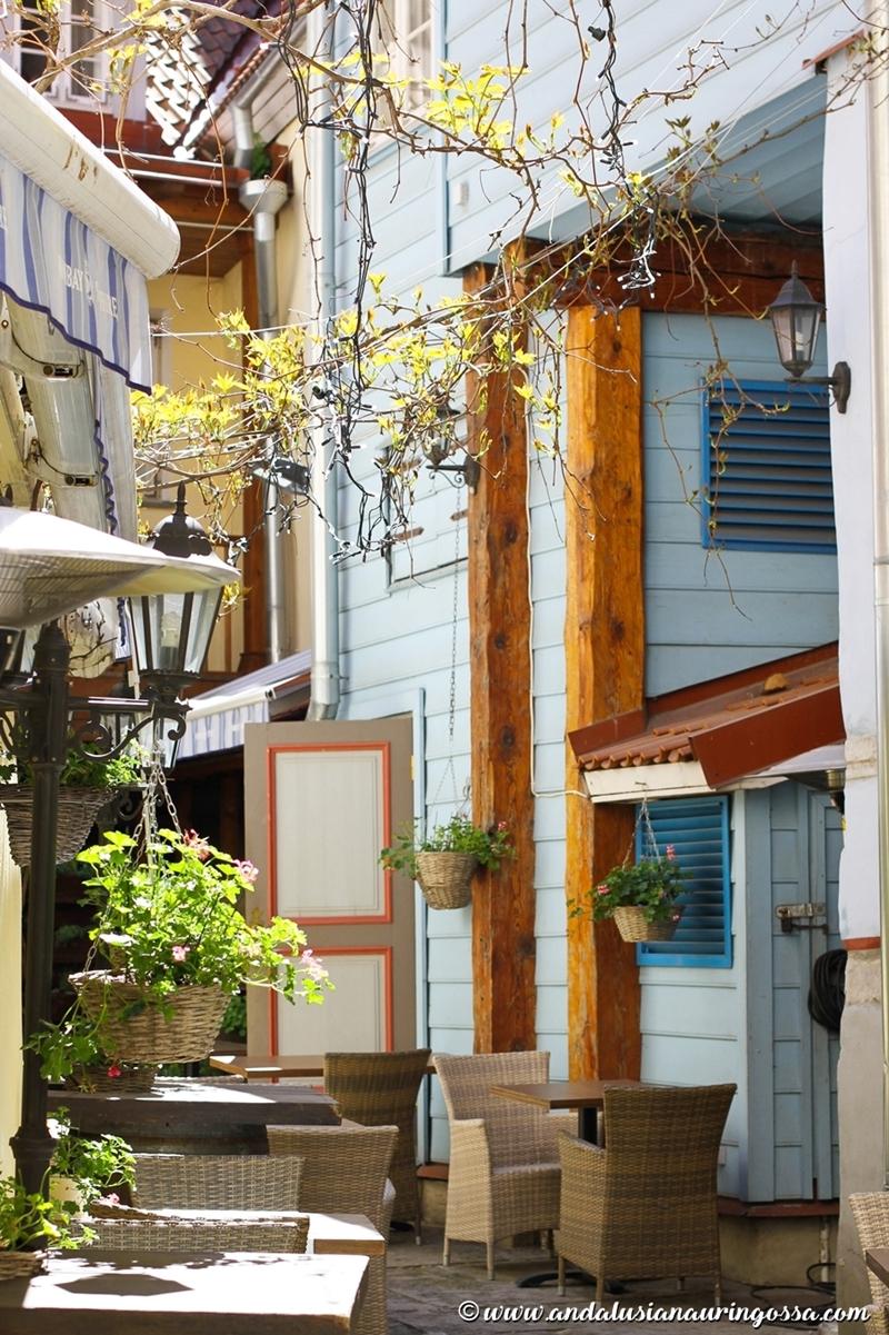 Ravintola Restoran Cru_Tallinna_Tallinnan parhaat ravintolat_White Guide_Andalusian auringossa_ruokablogi_matkablogi_18