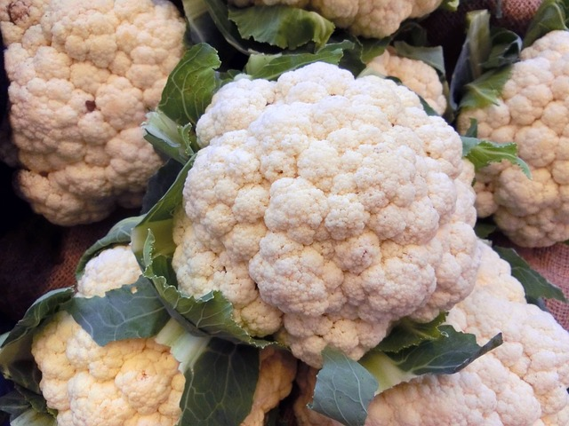 almoranas cauliflower