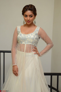 Anu Emmanuel in a Transparent White Choli Cream Ghagra Stunning Pics 016.JPG