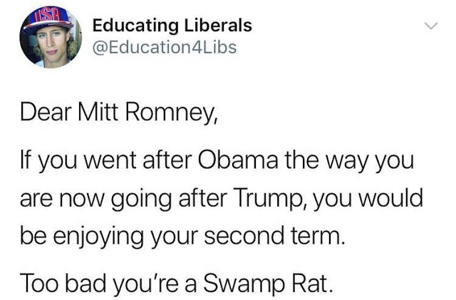 Romney - Self Enriching Rino