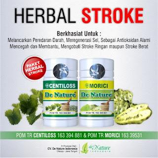 Obat herbal untuk stroke, Obat herbal stroke, Obat herbal untuk stroke de nature