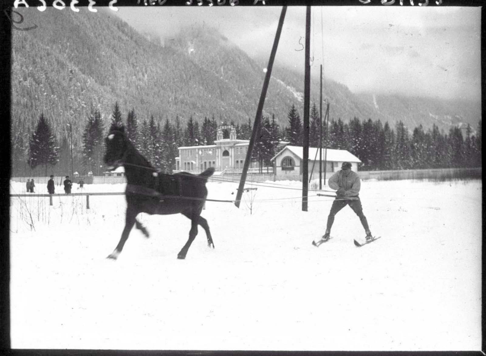 The skijoring line is usually at least 2.5 metres (8 feet) long.