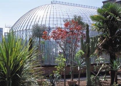 Things to do in brittany loire atlantique le jardin de for Jardin des plantes nantes