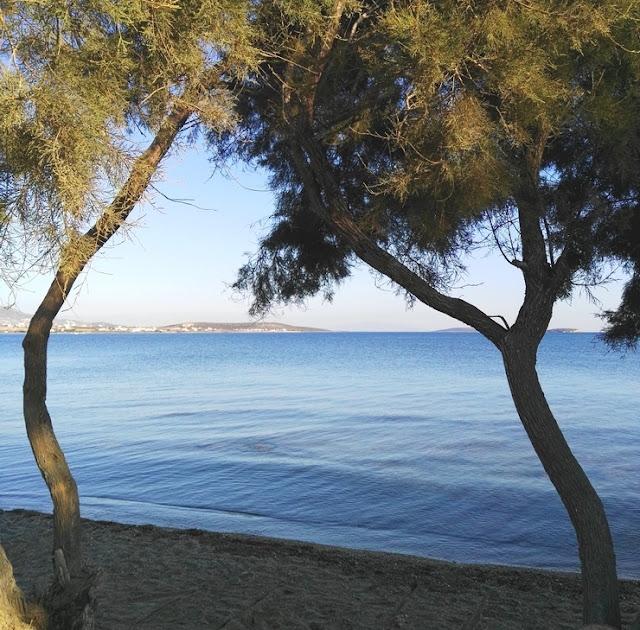 antiparos fanari plage