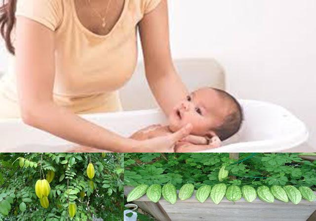 Dùng lá khế hoặc khổ qua tắm cho bé khi bị rôm sẩy