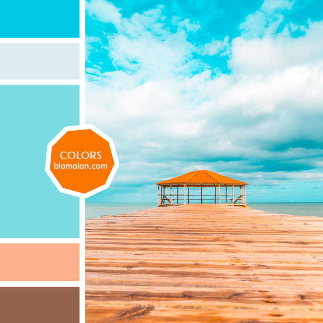 variedad_en_color_moodboard_77