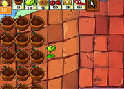 Plants vs Zombies Sun Day