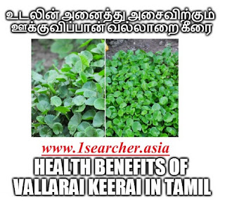 http://www.1searcher.asia/2017/03/health-benefits-of-vallarai-keerai-in.html
