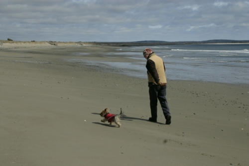 Ziggy and Jim, getting to know each other at Martinique Beach, NS