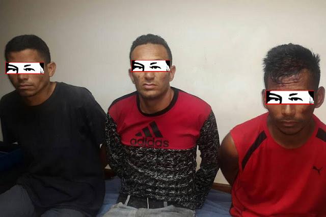 Capturaron a estos tres bichitos robando en El Rosal