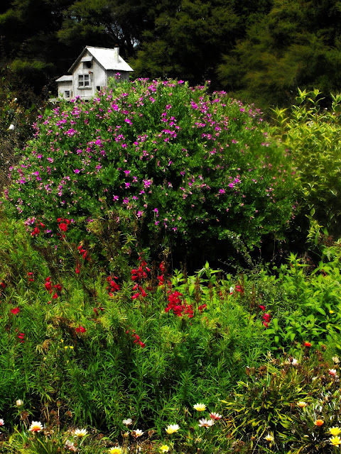 The bird house in the herbaceous border
