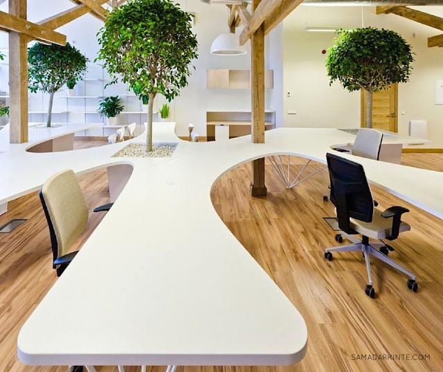 samadar-kinte-Saiba-como-as-plantas-podem-deixar-seu-dia-mais-produtivo-escritorio-futurista