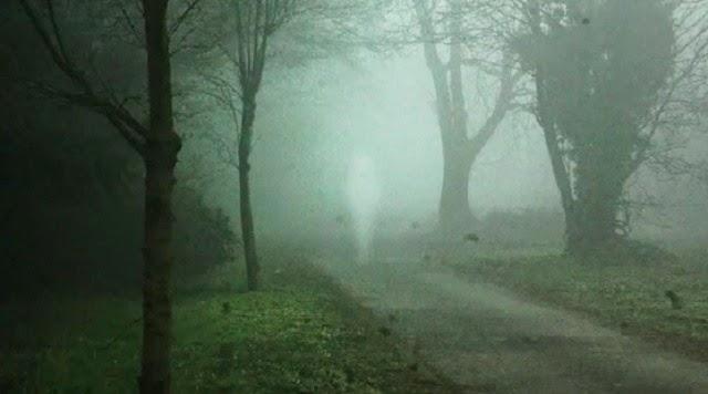 fotos de fantasmas, assombração, real, medo, terror, espectro, aparição