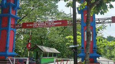 Hutan Tinjomoyo