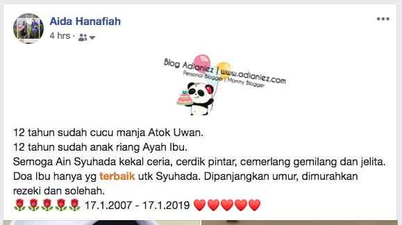 Ain Syuhada | Happy 12th Birthday, My Darling Adik :)