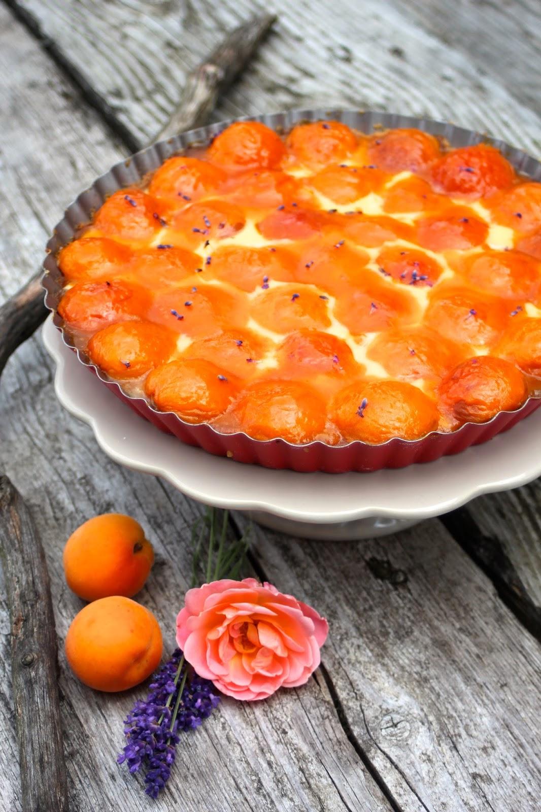 Sommerliche-Aprikosen-Lavendelhonig-Tarte