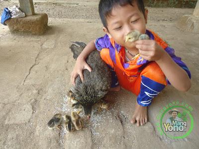FOTO 1 : Jangan Marahi Anak Yang Nakal.   Dimarahi Justru Bisa Meningkatkan Kenakalannya
