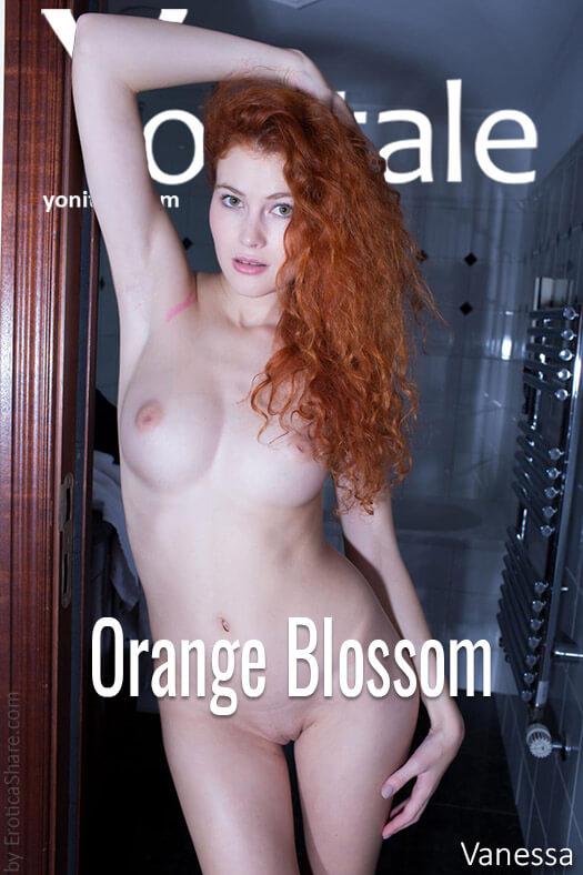 470xz1U Yonitale - Vanessa - Orange Blossom yonitale 08200