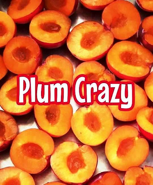 Plum Crazy Jam By Greeker than the Greeks