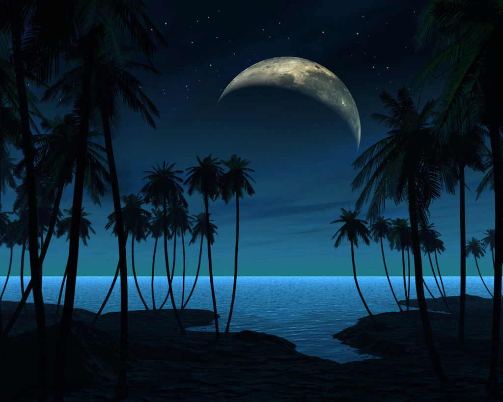 Night Beach Wallpaper