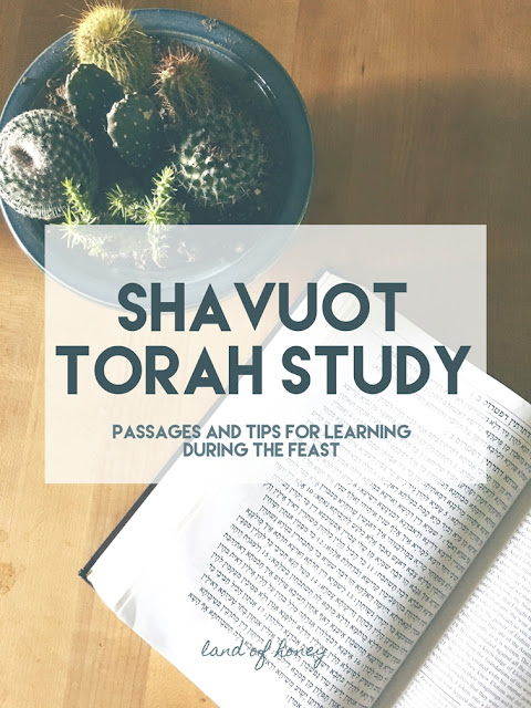 Shavuot Torah Study: tips and passages | Land of Honey