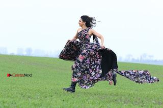 Actress Rakul Preet Singh Stills in Winner Movie  0001.jpg