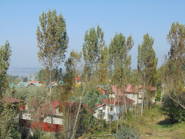 view from nishat garden