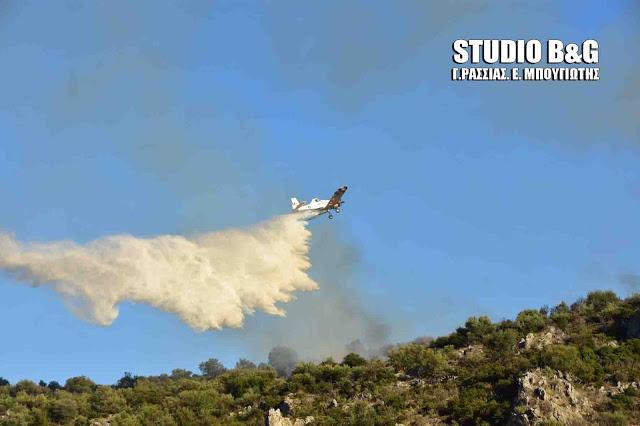 51 αγροτοδασικές πυρκαγιές σε όλη την Ελλάδα το τελευταίο 24ωρο