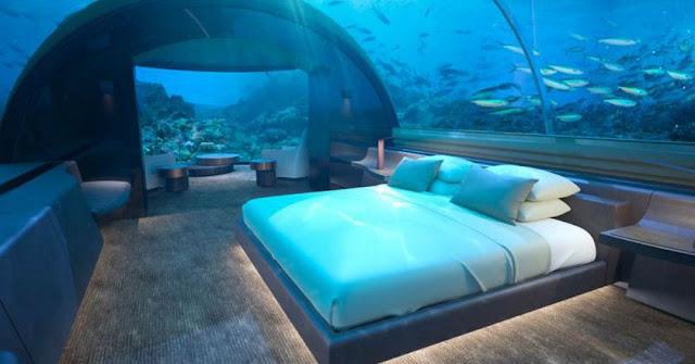 http://www.liataja.com/2018/05/beginilah-hotel-mewah-bawah-laut-dengan.html