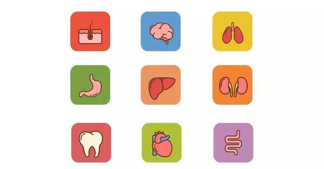艾灸1個穴位通肝膽, 5大疾病全解決!(膽經和肝經)