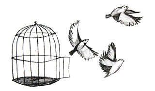 birds flying out of the cage