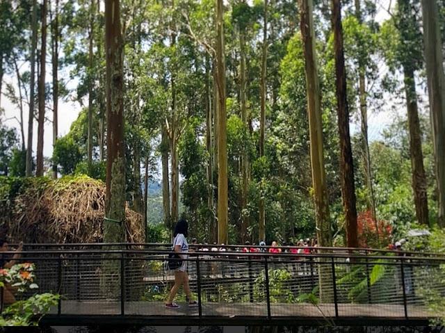 Tempat Wisata Dusun Bambu Lembang Bandung