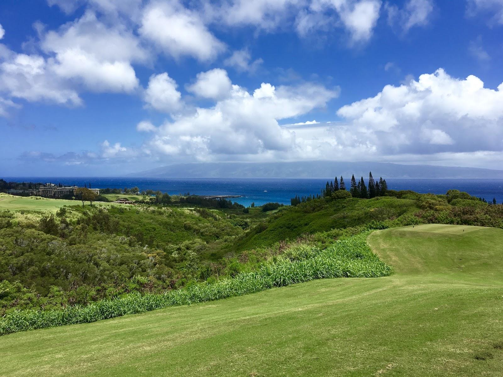 TASTE OF HAWAII: THE PLANTATION COURSE - KAPALUA, MAUI