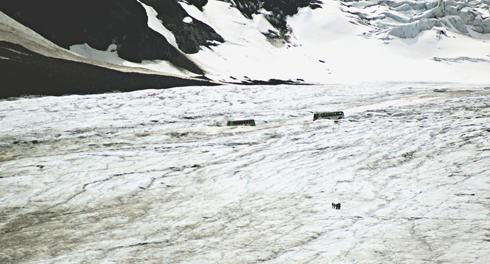 Columbia Icefield Jasper Alberta