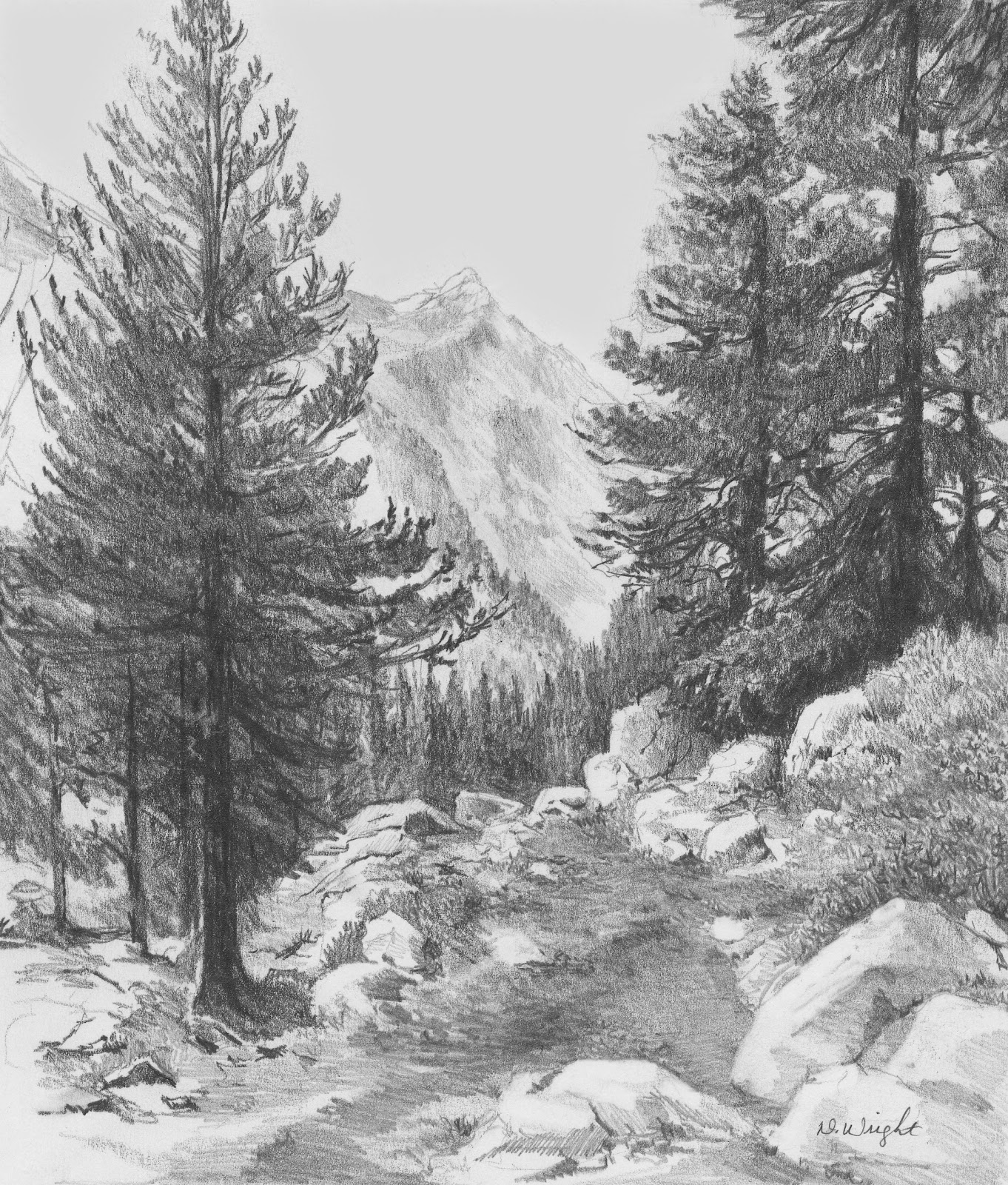 Beautiful Nature Pencil Drawings: Diane Wright Art Journal: Recent Article