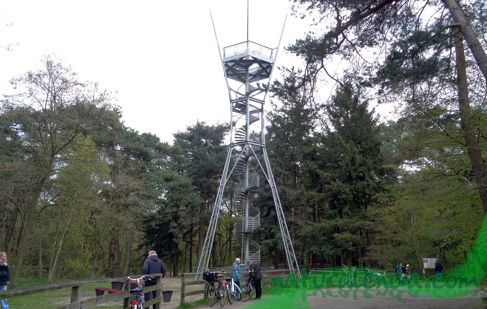 la torre de observacion