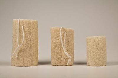 Luffa la esponja vegetal