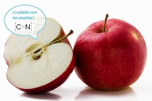 semilla de fruta que contiene cianuro