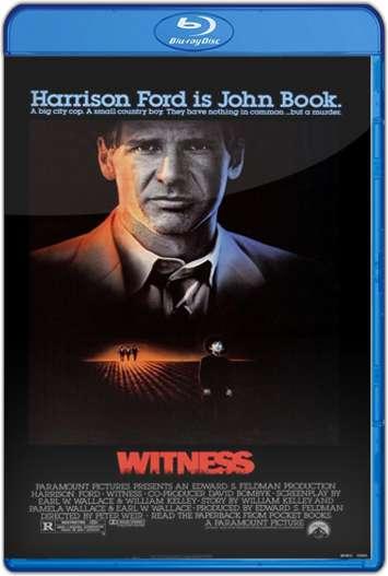 Testigo en peligro (1985) HD 1080p Latino