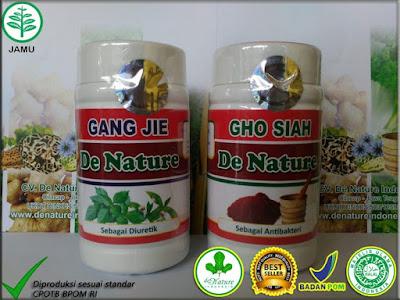 trick mengobati sipilis baru herbal tradisional de nature jambi info 082221671001