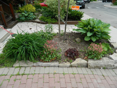 by Paul Jung Gardening Services--a Toronto Gardening Company new front makeover in Wychwood before