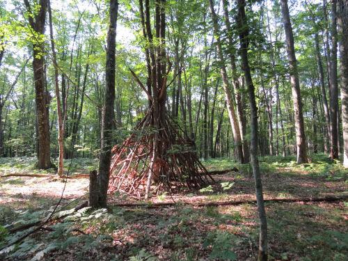teepee of sticks