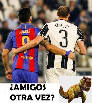 memes suarez chiellini tiranosaurio 2017 mordelon