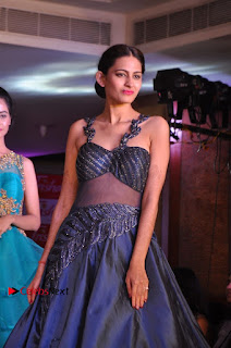 South Indian Celebrities Pos at Love For Handloom Collection Fashion Show  0073.jpg
