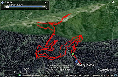 Screen capture Google Earth trek hiking di Jalur Pinus Negla (JPN)