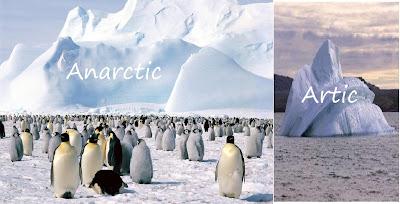 Perbedan Arktik dan Antartika