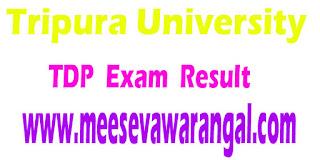 Tripura University TDP (General)/TDP (Hons) II/IV Sem 2016 Exam Results