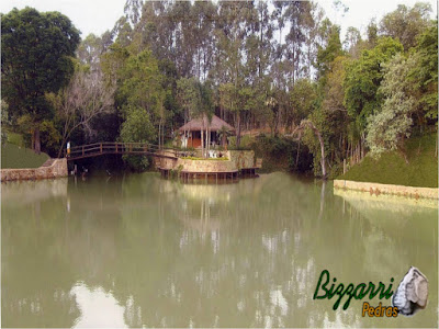 Construção de lago com pedra com a execução da churrasqueira no quiosque de piaçava, a ponte de madeira e o deck de madeira em volta do lago em sítio em Porto Feliz-SP.